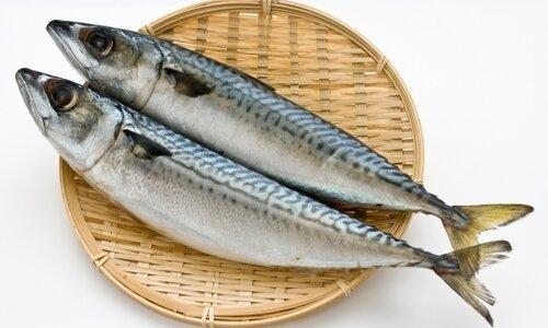 サバ缶の栄養はダイエットに良い⁈